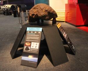 5-1 World's Largest Oriented Pallasite