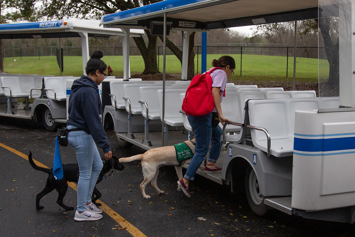 Guide dogs boarding NASA Tram Tour tram