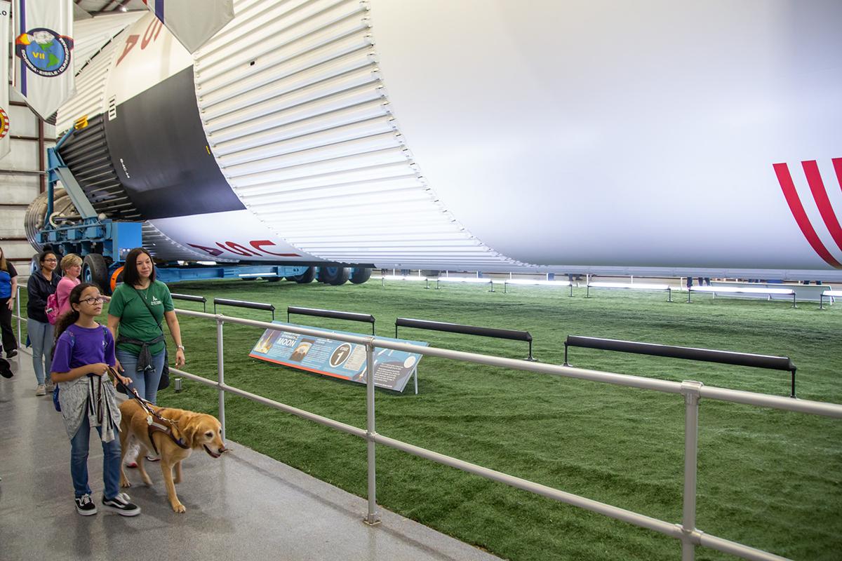 Guide dogs in Rocket Park