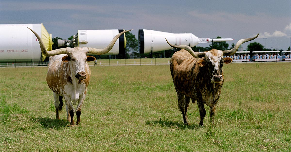 Astrosteers: What is NASA's Longhorn Project?